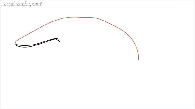 how to draw a whale step (2)