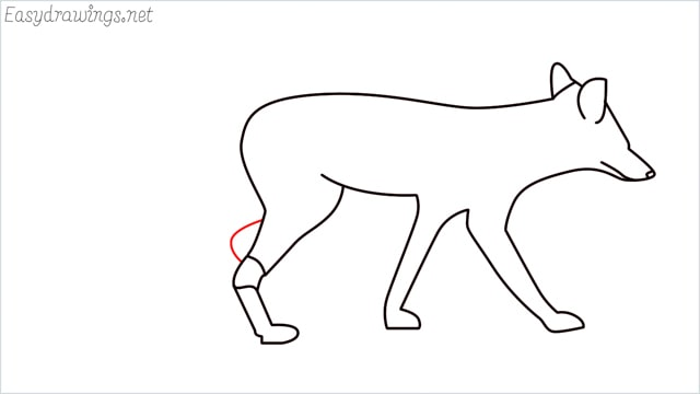how to draw a wolf step (11)