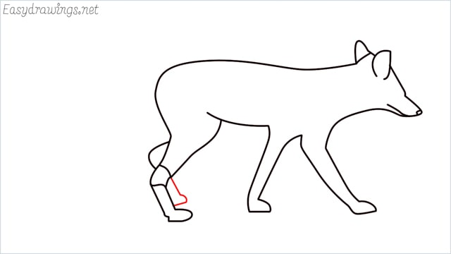 how to draw a wolf step (12)