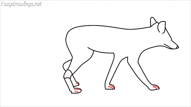 how to draw a wolf step (13)