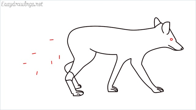 how to draw a wolf step (14)