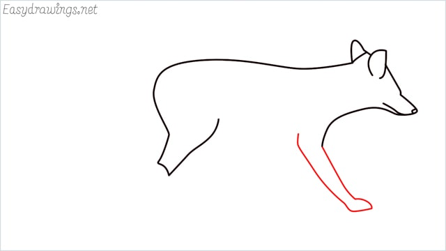 how to draw a wolf step (6)