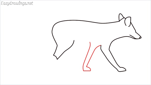 how to draw a wolf step (7)