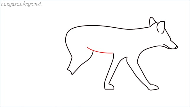 how to draw a wolf step (8)