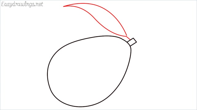 how to draw an avocado step (3)