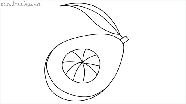 how to draw an avocado step by step