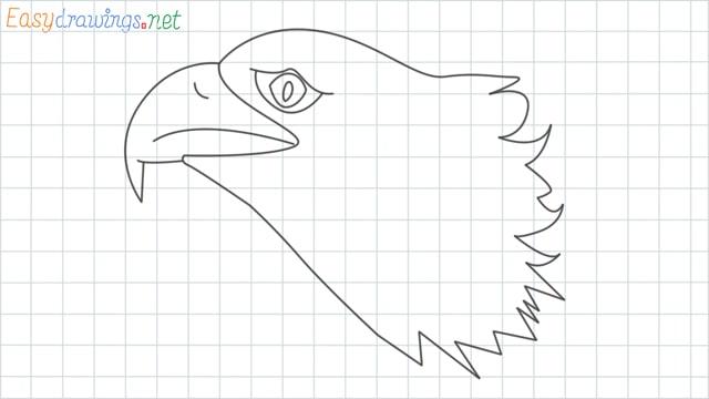 Eagle head grid line drawing