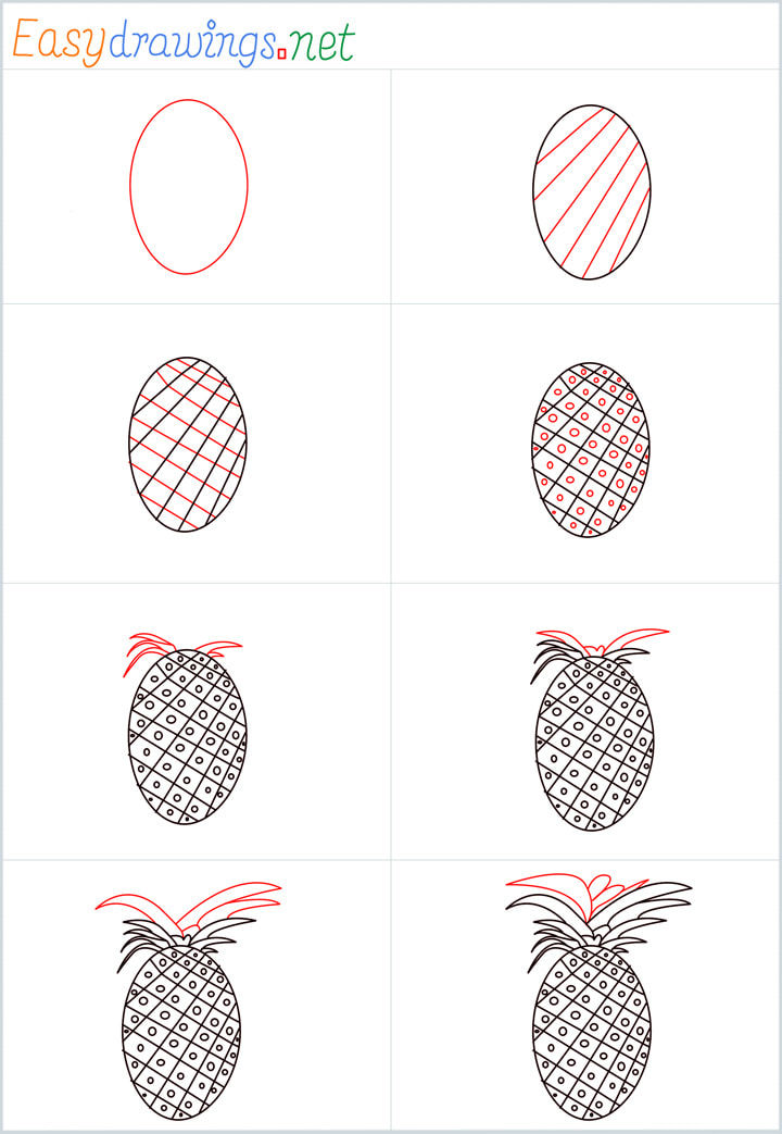 all outline for Pineapple drawing example