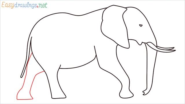 How to draw a elephant step (10)