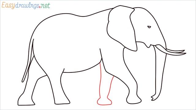 How to draw a elephant step (11)