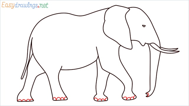 How to draw a elephant step (12)