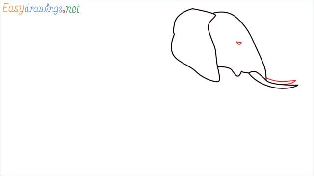 How to draw a elephant step (4)