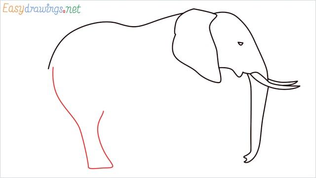 How to draw a elephant step (7)