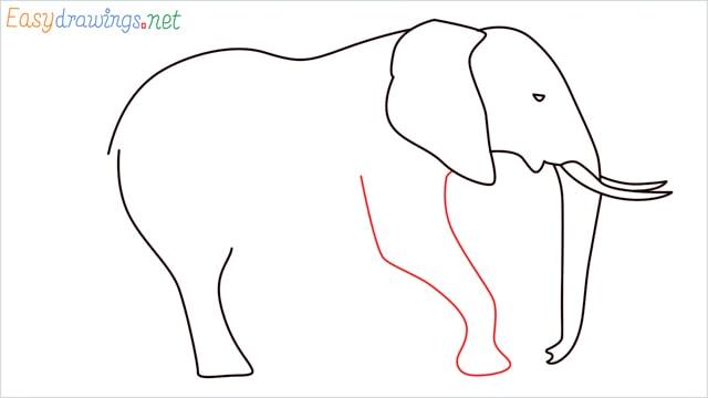 How to draw a elephant step (8)