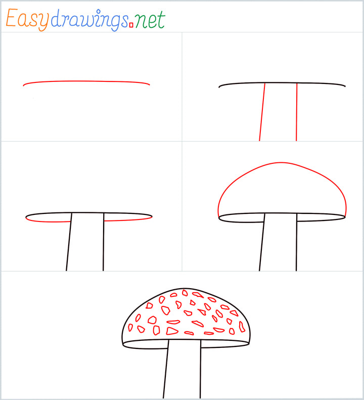 all reference outline drawing in one place for Mushroom drawing tutorial