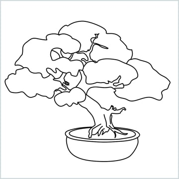 How To Draw A Bonsai Tree Step By Step For Beginners