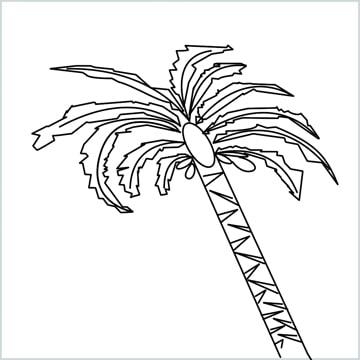 date tree drawing