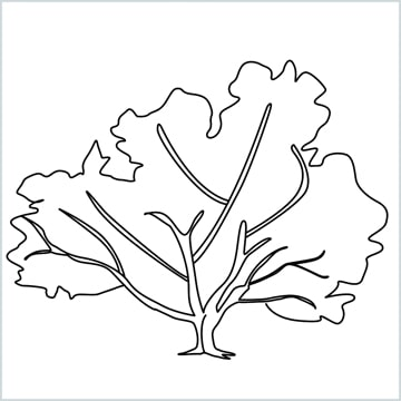 fall tree drawing