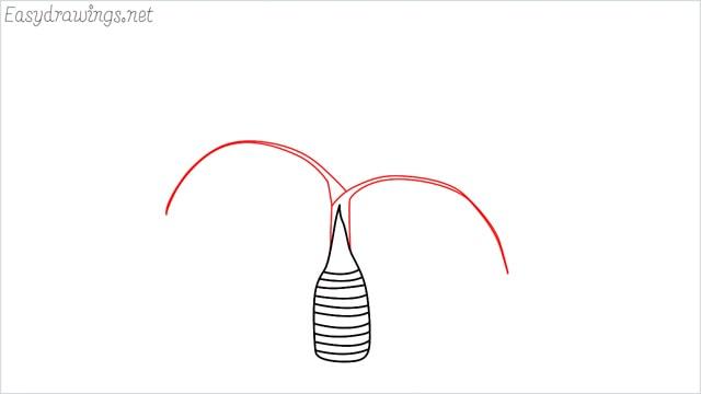 how to draw a Areca tree step (3)
