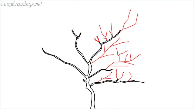how to draw a apple tree step (3)