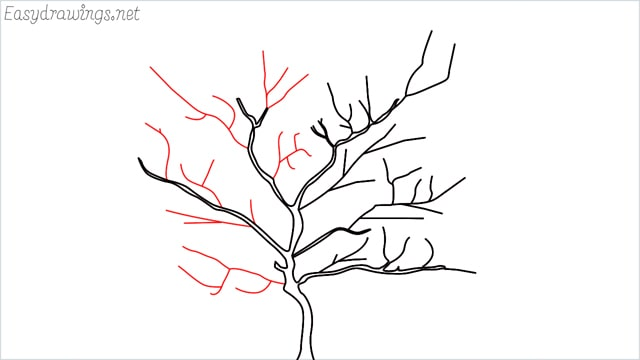 how to draw a apple tree step (4)