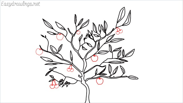 how to draw a apple tree step (6)