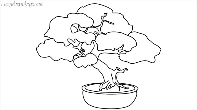 how to draw a bonsai tree drawing step by step for beginners