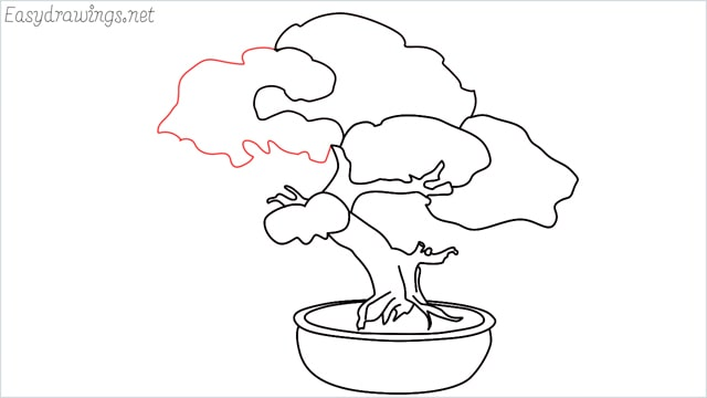 how to draw a bonsai tree step (11)