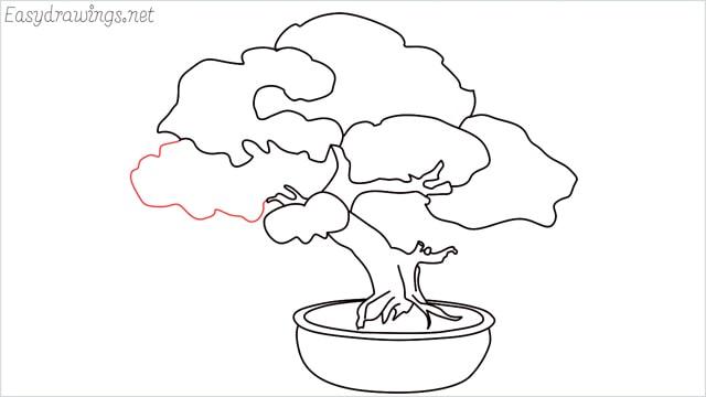 how to draw a bonsai tree step (12)