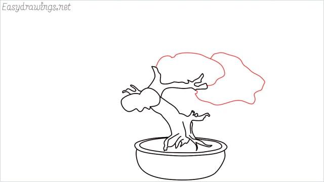 how to draw a bonsai tree step (9)
