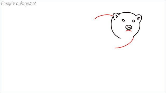 how to draw a brown bear step (5)
