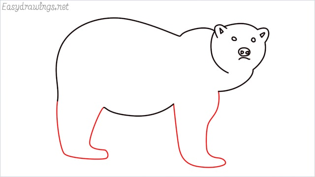 how to draw a brown bear step (7)