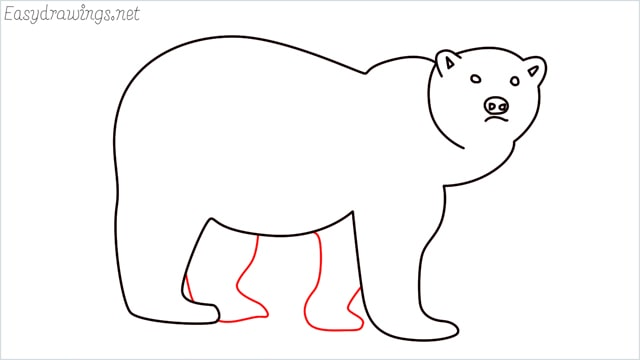 how to draw a brown bear step (8)