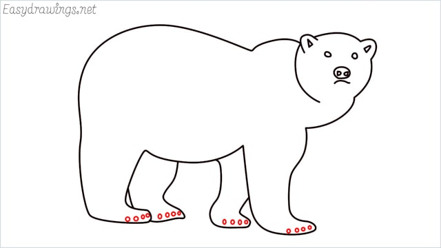 how to draw a brown bear step (9)