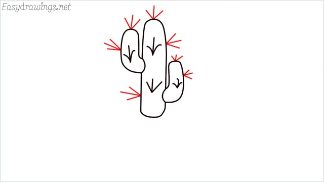 how to draw a cactus step (6)