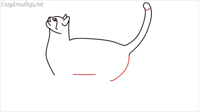 how to draw a cat step (10)