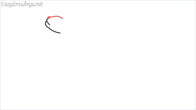 how to draw a cat step (3)
