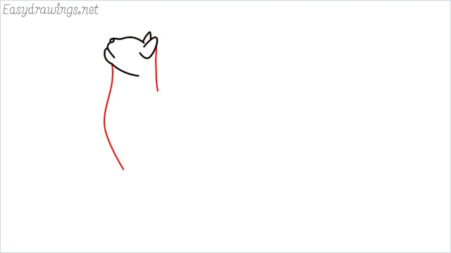 how to draw a cat step (5)