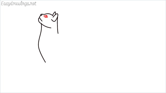 how to draw a cat step (6)