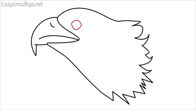 how to draw a eagle head step (7)