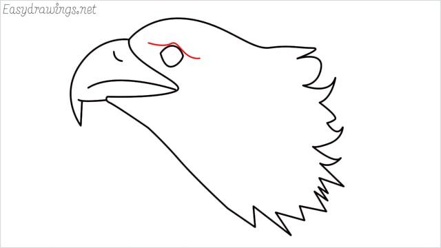 how to draw a eagle head step (8)