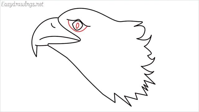 how to draw a eagle head step (9)
