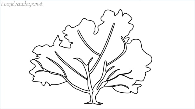 how to draw a fall tree drawing step by step for beginners