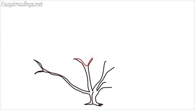how to draw a fall tree step (11)