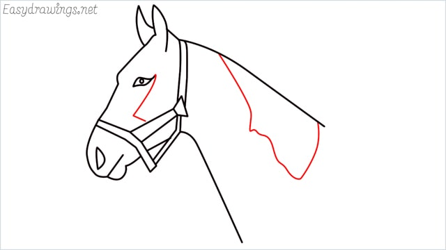 how to draw a horse head step (10)