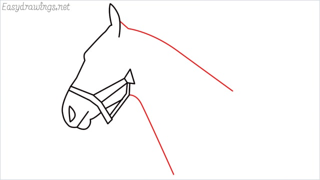 how to draw a horse head step (7)