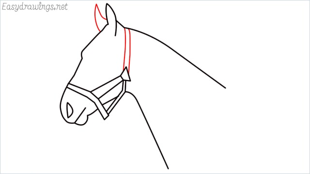 how to draw a horse head step (8)