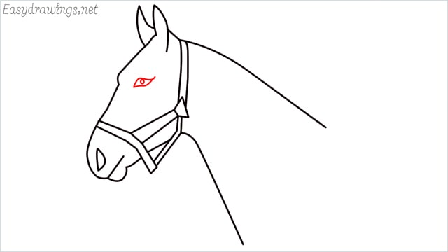 how to draw a horse head step (9)