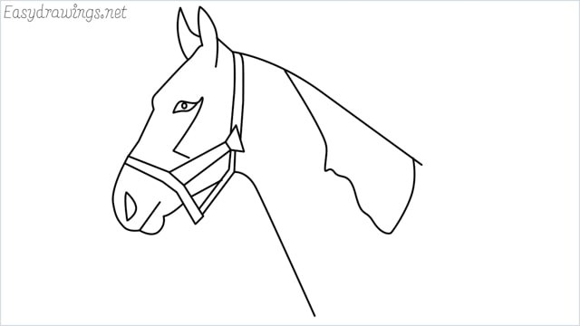 how to draw a horse head step by step for beginners
