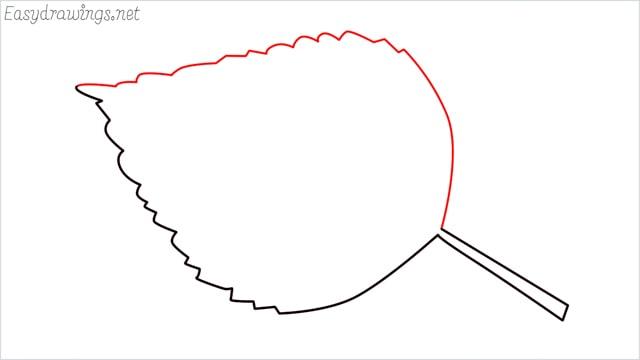 how to draw a leaf step (4)